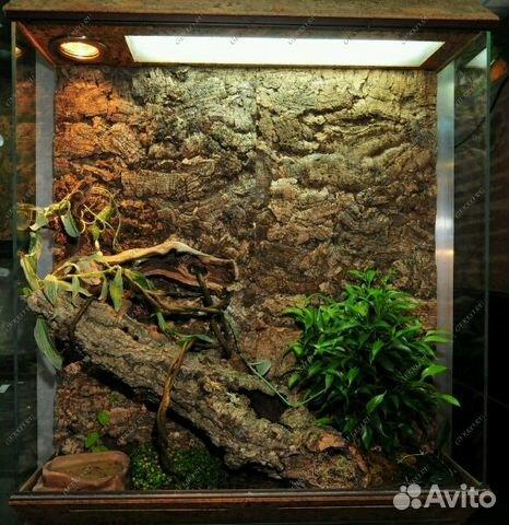 Террариум для гекконов своими руками