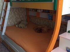 Детская кровать бу - кровати, диваны, столы, стулья и кресла.