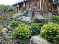 Ландшафтные камни