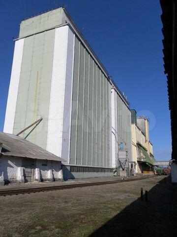 Элеватор в павловской краснодарского края фольксваген транспортер купить новый цена